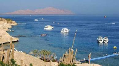 sharks-bay_view-of-tiran-island